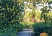 a garden on the atlantic coast