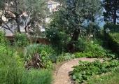 a garden on the mediterranean coast